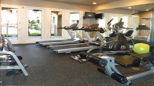 Treadmills, cycles and rowing machines in community center fitness facility - 5303 N 7th St, Phoenix AZ - fitness facility available to residents - Bill Salvatore, Arizona Elite Properties 602-999-0952 - Arizona Real Estate