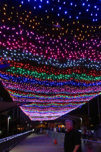 Bill Salvatore standing under a blanket of colored lights at the entrance to Zoolights - Thank you Thursday - Entrance at Phoenix Zoo Lights 2016 - Phoenix Zoo and SRP - Bill Salvatore, Arizona Elite Properties 602-999-0952 - Arizona Real Estate