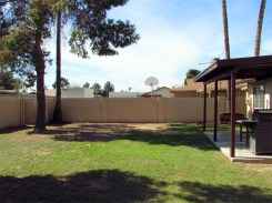grassy back yard with block fencing and mature shade trees - 783 W Park Ave, Chandler Arizona - Pool-size back yard - Bill Salvatore, Arizona Elite Properties 602-999-0952 - Arizona Real Estate