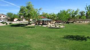 common areas are open and spacious, grassy and well kept with playgrounds and picnic ramadas - 1795 W Gold Mine Way, Queen Creek, Arizona 85142 - Enormous grassy common areas with playground - Bill Salvatore, Arizona Elite Properties 602-999-0952 - Arizona Real Estate