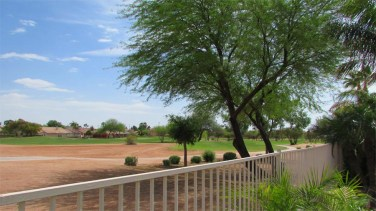 panoramic view of desert golf course and mature trees, through back yard view fence - Course-side lot with golf course view - 1205 S Sandstone Street, Gilbert AZ 85396 - Western Skies Golf Community - Bill Salvatore, Arizona Elite Properties 602-999-0952 - Arizona Real Estate