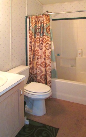 bathroom with small vanily, tub and shower, light patterned walls, carpeted floor - Good size master bedroom with bath - 161 N 88th Place, Mesa AZ - Bill Salvatore, Arizona Elite Properties - Mesa Arizona property for sale
