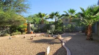 16 backyard