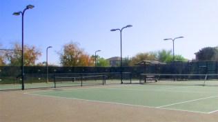 31 tennis