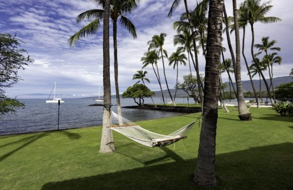 expansive grassy lawnwith ocean view, string hammock between palm trees - 1.61 acres - Honuala'i Estate on the Big Island of Hawaii, Hawaiian Luxury Real Estate, Homes for Sale in Hawaii, via RIS Media Housecall - Bill Salvatore, Arizona Elite Propeties 602-999-0952 - Arizona Real Estate