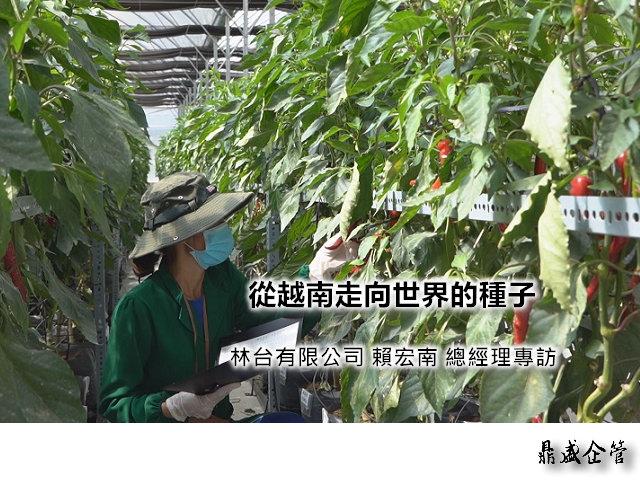 林台 賴宏南 總經理 從越南走向世界的種子