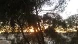 Soarele își apleacă fruntea în palme și se pregătește de plecare.