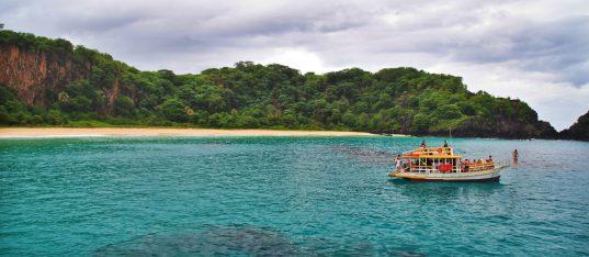 Fernando de Noronha Boat Tour snorkel