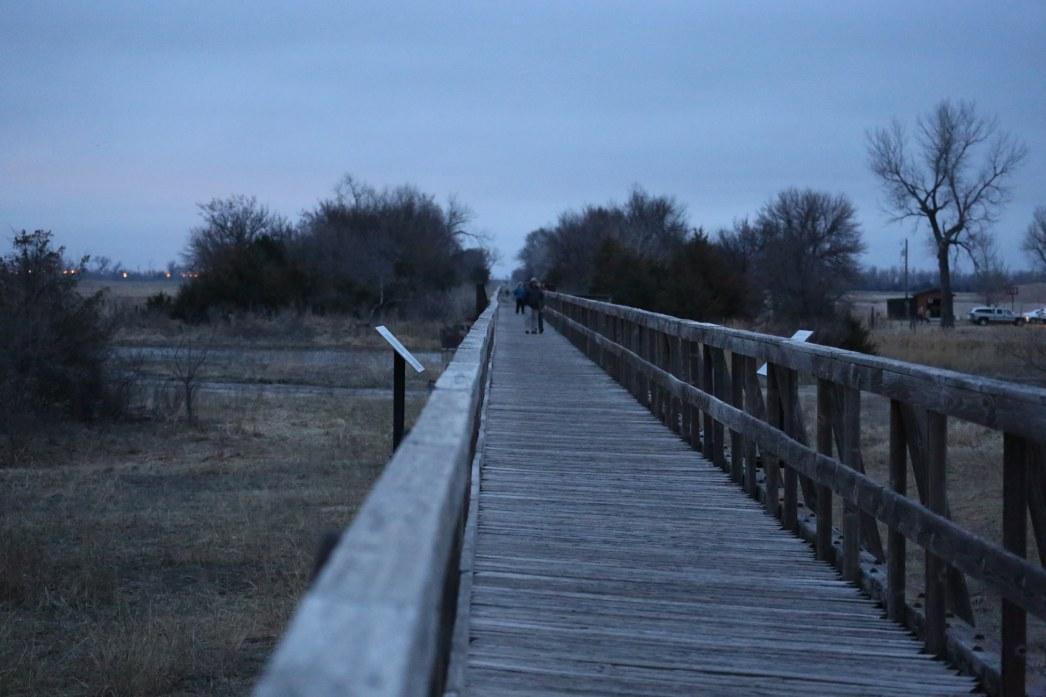 Sandhill cranes on the Platte River landing empty bridge