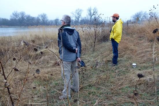 Sandhill cranes on the Platte River sunrise observers