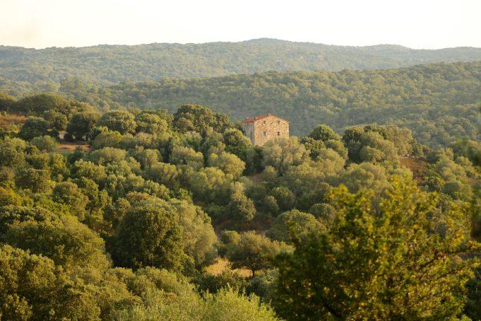 Domaine de Murtoli house on hill
