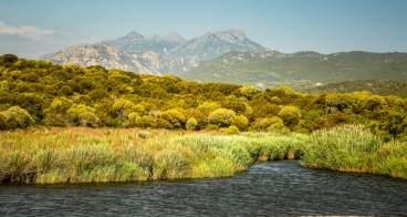 Domaine de Murtoli river