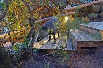 Domaine de Murtoli wild boar dinner