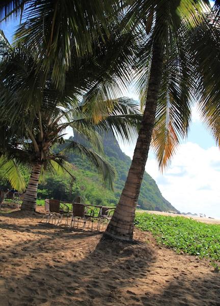 Praia Conceição Fernando de Noronha bar