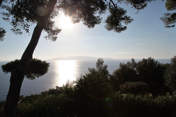 Monte Argentario sunset trees
