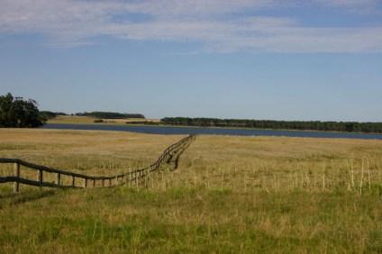 Garzon ranch fence