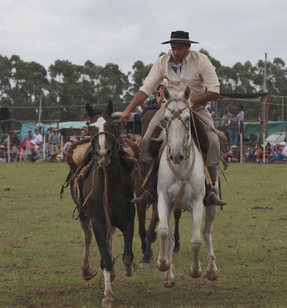 Garzon Carnival gauchos horses