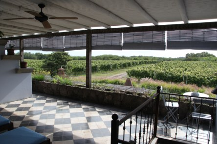 Narbona Wine Lodge room view