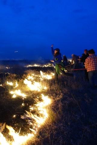 Flying W Ranch fire line