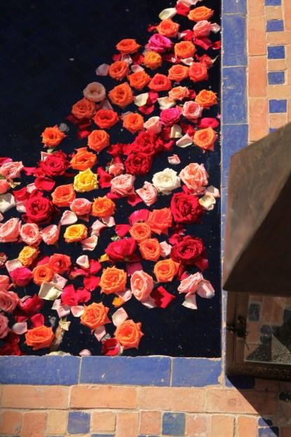 Kasbah Tamadot petals