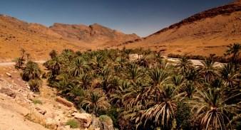 Morocco oasis town