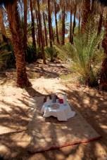 Dar Ahlam oasis picnic