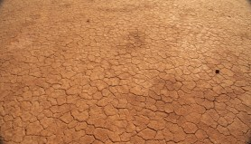 Morocco desert ground