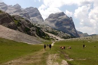 Fanes-Senes-Braies Nature Reserve #11 trail view