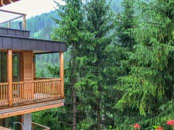 Rosa Alpina room view