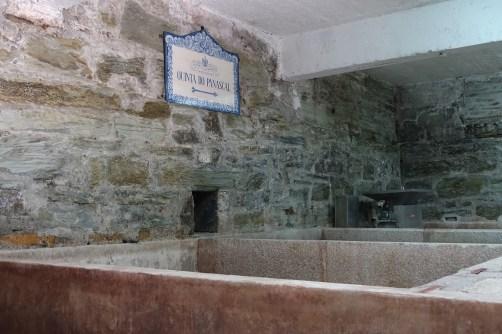 Quinta do Panascal wine vats