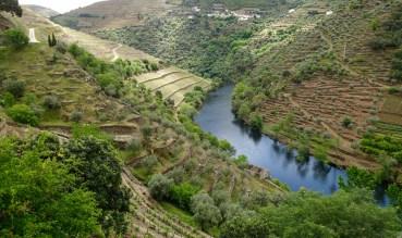 Quinta do Panascal river view