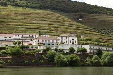 Douro Exclusive boat tour views