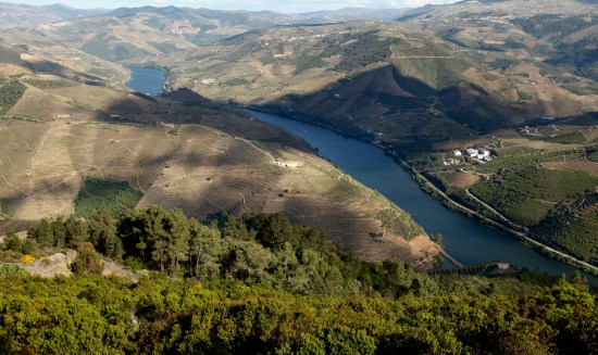 Douro Valley high view