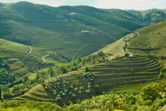 Douro Valley green hills
