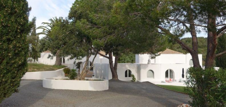 Casa Arte entrance tree