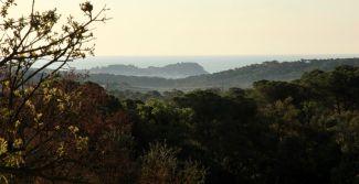 Sant Pere del Bosc sea view