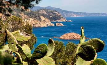 Tossa del Mar coastline