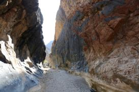 """This is called Snake Canyon -- a very famous slot canyon that I've read a lot about. I really wanted to hike it. And then I heard that it's called """"Snake Canyon"""" not because of its narrowness....but because of SNAKES!! 😬"""