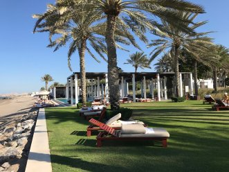 I loved how they have all of these lounging areas scattered in the shade of the palm trees.