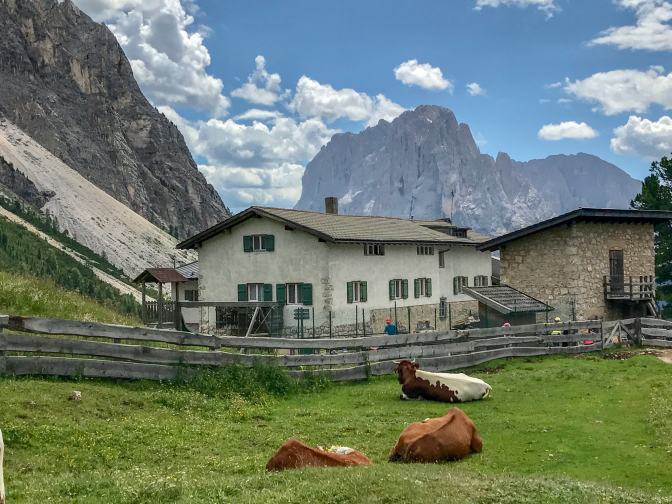 Like a lot of other rifugi, Rifugio Firenze is a family owned working farm. They raise a lot of their own food and milk.
