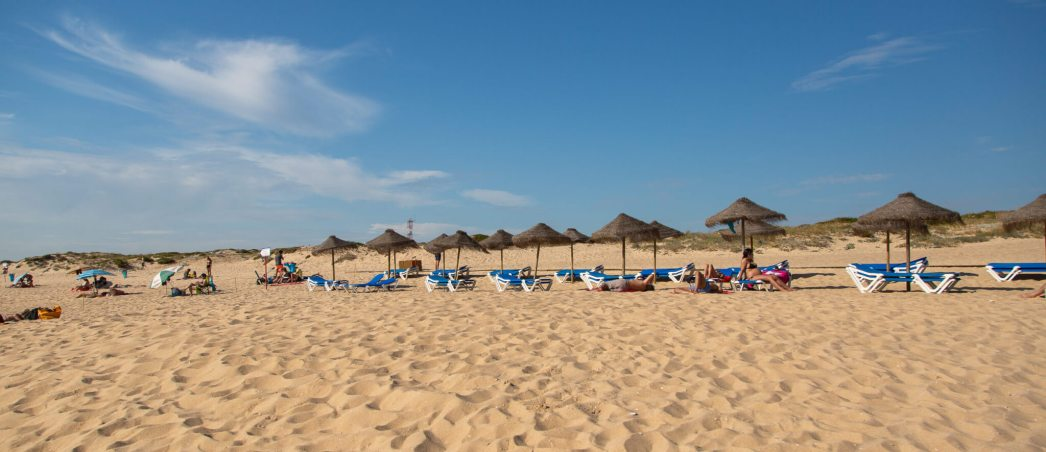 You can rent beach chairs or bring your own in a separate area.