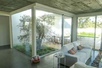 Brejos Villa Comporta olive tree