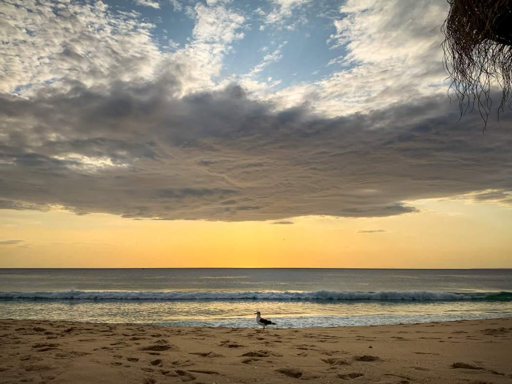 Comporta Beach clouds at sunset