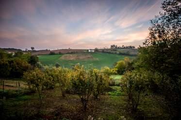 La Casa Gialla Monforte view of vineyards