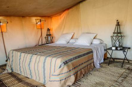 Your tent has it's own gigantic and comfy king bed, as comfortable as a hotel.