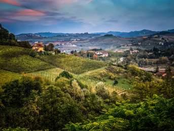 views of Monforte d'Alba valleys