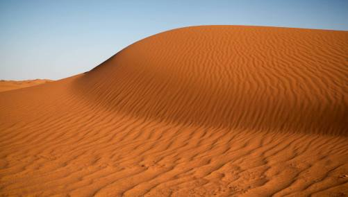 The Sahara is the biggest desert in the world, stretching from the Red Sea to the Atlantic Ocean....
