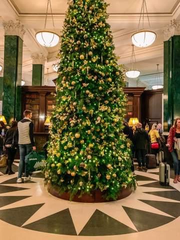The Ned Christmas tree