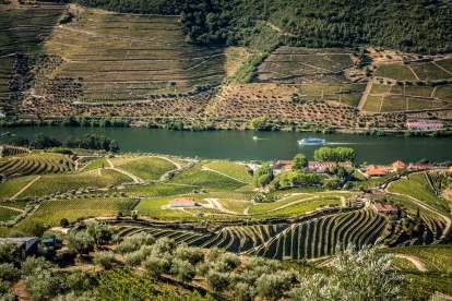 Cruise on Douro River