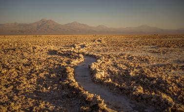 Salar de Atacama curving trail
